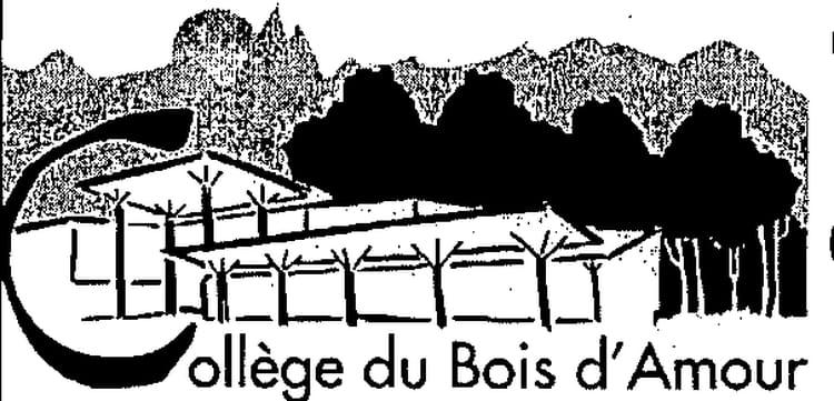 College Le Bois Damour à Billere  Copains davant ~ College Bois D Amour Billere