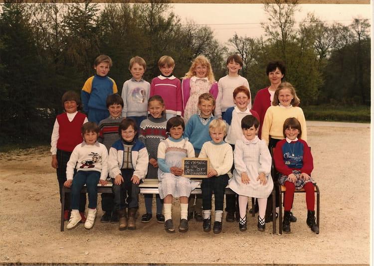Photo de classe CE2 1984 de 1984, Ecole Primaire (Le Mesnil Au Val ...