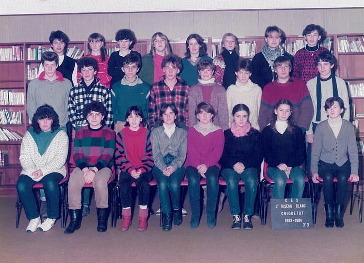 photo de classe 3 me3 de 1984 coll ge l 39 oiseau blanc copains d 39 avant. Black Bedroom Furniture Sets. Home Design Ideas
