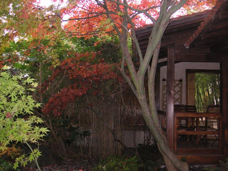 Photo de classe Jardin japonais a paris de 2006, Les Jardins D\'ombre ...